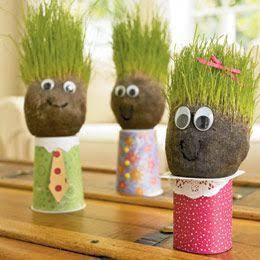 grassy heads